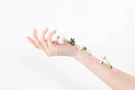 Photo for Cropped view of woman with flowers on hand on white background, environmental saving concept - Royalty Free Image