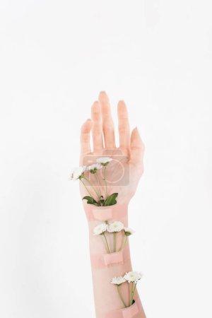 Photo pour Vue recadrée de femme avec fleurs sur main isolé sur blanc, environnement économie concept - image libre de droit