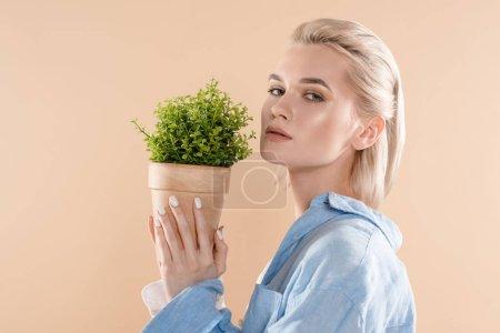 Foto de Chica atractiva celebración de maceta con planta y mirando a cámara aislada en concepto de ahorro amarillento, medio ambiente - Imagen libre de derechos