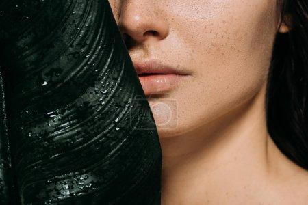 Photo pour Recadrée vue de belle femme avec des taches de rousseur posant avec feuille de palmier vert - image libre de droit