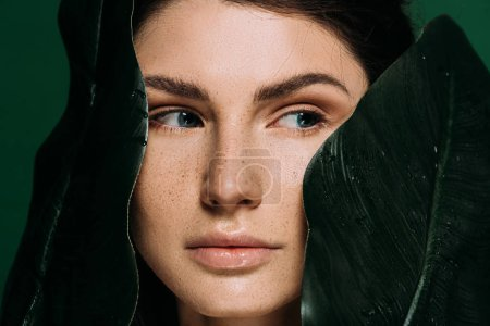 Photo for Young woman with freckles on face posing with leaves isolated on green - Royalty Free Image