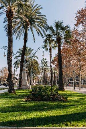 Photo pour Barcelone, Espagne - 28 décembre 2018: magnifique Parc de la Ciutadella avec grands palmiers verts - image libre de droit