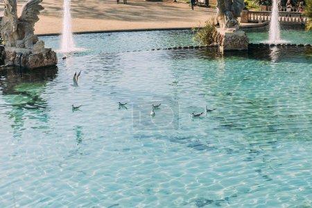 Foto de Barcelona, España - 28 de diciembre de 2018: hermoso lago con fuentes y esculturas en Parc de la Ciutadella - Imagen libre de derechos