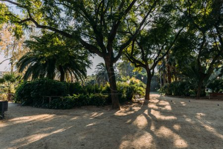 Photo for Green trees and walking paths in parc de la ciutadella, barcelona, spain - Royalty Free Image