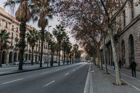 BARCELONA, SPAIN - DECEMBER 28, 2018: city street with roadway with buildings and palm trees