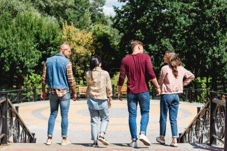 Photo pour Retour viiew de groupe multiculturel d'amis marchant dans le parc - image libre de droit