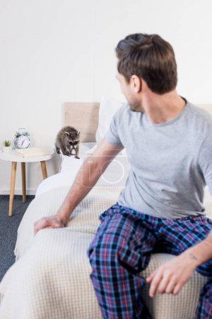 Foto de Enfoque selectivo de mapache peludo lindo en la ropa de cama cerca del hombre en pijama - Imagen libre de derechos
