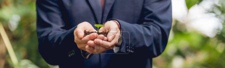 Photo pour Vue recadrée de l'homme d'affaires dans le procès retenant le germe vert et le sol dans des mains dans l'orangerie - image libre de droit