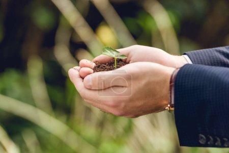 vista recortada de hombre de negocios sosteniendo brote verde y tierra en las manos en la naranjería
