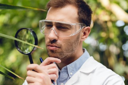Photo for Thoughtful scientist in white coat and goggles examining plants with loupe in green orangery - Royalty Free Image