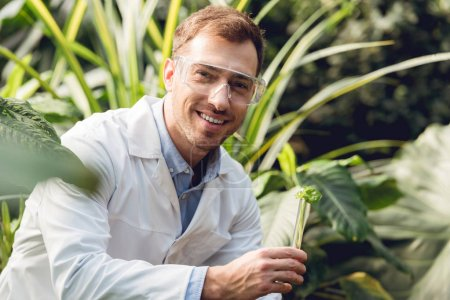 Photo for Selective focus of smiling handsome scientist in white coat and goggles taking plant sample in flask in orangery - Royalty Free Image