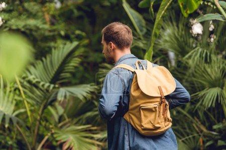 Photo pour Voyageur avec le sac à dos marchant dans la forêt tropicale verte - image libre de droit