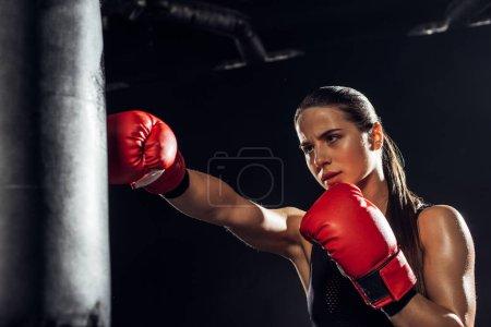Photo pour Boxeur féminin dans la formation de gants de boxe rouge avec le sac de poinçonnage - image libre de droit