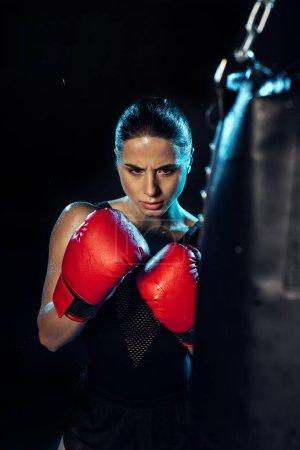 Photo pour Boxeur concentré dans les gants de boxe rouge regardant le sac de poinçonnage sur le noir - image libre de droit