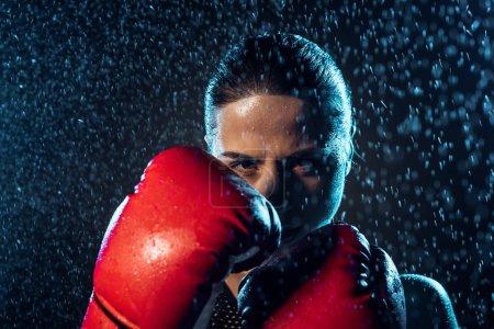 Photo pour Boxeur concentré dans les gants de boxe rouge restant sous l'eau tombe sur le noir - image libre de droit