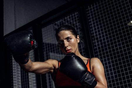 Photo pour Boxeur concentré dans les gants de boxe noire de formation et de regarder loin - image libre de droit