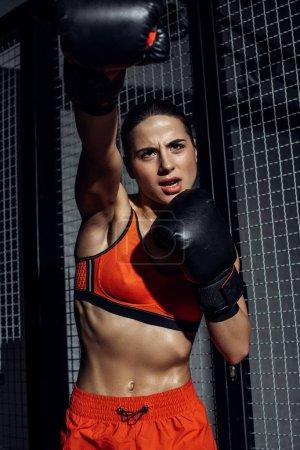Photo pour Boxeur confiant dans la formation de gants de boxe noire et regardant vers le haut - image libre de droit