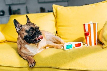 Niedliche französische Bulldogge liegt neben 3D-Gläsern und leckerem Popcorn im Eimer auf gelbem Sofa