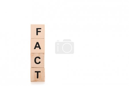 Photo for Black fact word made of wooden blocks isolated on white - Royalty Free Image