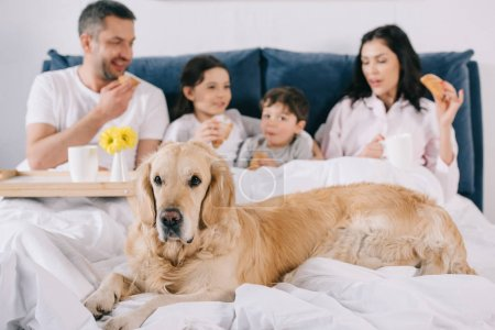 Photo for Selective focus of golden retriever near happy family in bed - Royalty Free Image