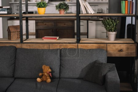 Photo for Teddy bear on modern grey sofa in living room with sunshine - Royalty Free Image