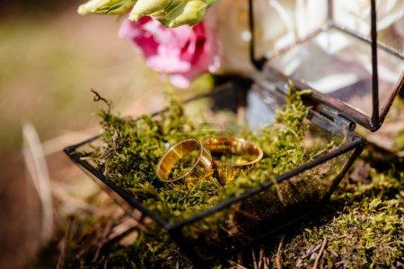 Foto de Enfoque selectivo de dos anillos de boda en la caja - Imagen libre de derechos