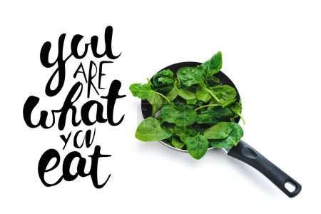 Photo for Green fresh spinach leaves in frying pan on white background near you are what you eat black lettering - Royalty Free Image