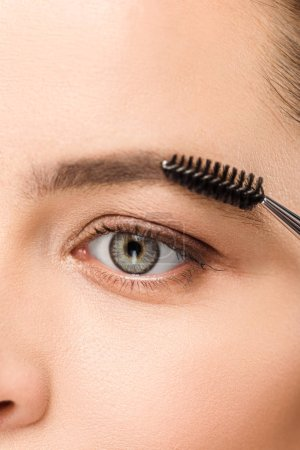 Photo for Cropped view of woman shaping eyebrow with eyebrow brush - Royalty Free Image