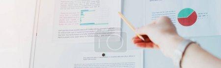 Foto de Panoramic shot of businesswoman pointing at flipchart with graphs and charts - Imagen libre de derechos
