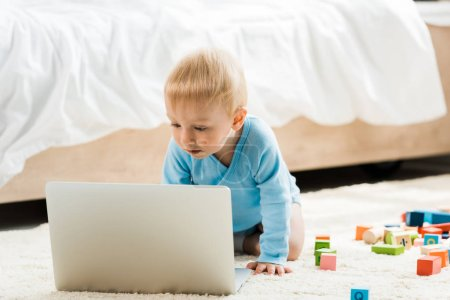 Photo for Cute toddler kid looking at laptop near colorful toy blocks on carpet - Royalty Free Image