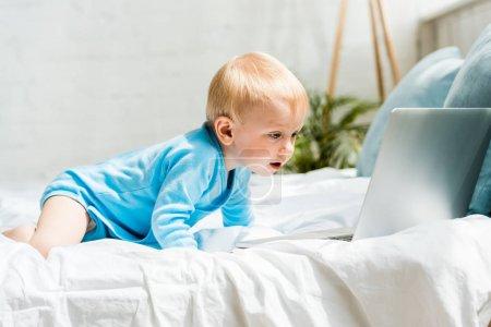 cute maluch dziecko patrząc na laptopa podczas indeksowania na łóżku w domu