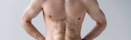 Photo pour Plan panoramique de l'homme musclé sexy torse nu isolé sur gris - image libre de droit