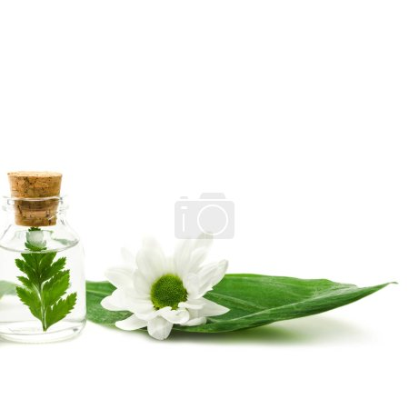 Photo for Bottle with liquid and green leaf with wooden cork near flower isolated on white - Royalty Free Image