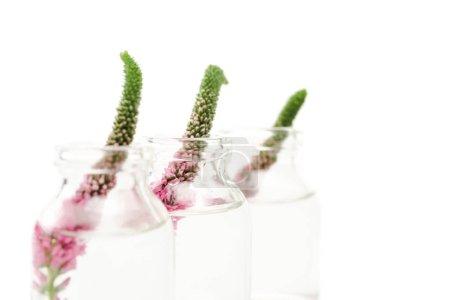 Photo pour Foyer sélectif des bouteilles en verre avec des fleurs veronica d'isolement sur le blanc - image libre de droit