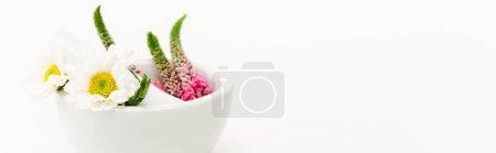 Foto de Veronica and chrysanthemum flowers in mortar near pestle isolated on white - Imagen libre de derechos