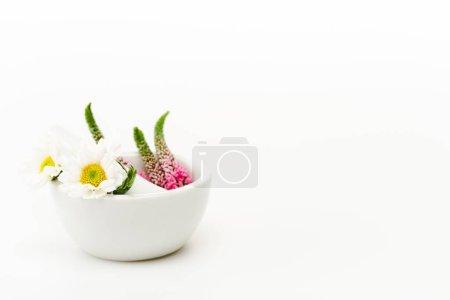 Foto de Veronica and chrysanthemum flowers in mortar near pestle on white - Imagen libre de derechos