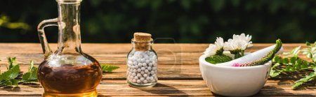 Photo for Panoramic shot of bottle with pills near plants on wooden table - Royalty Free Image