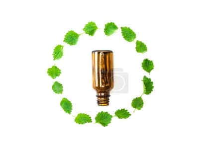 Photo for Top view of small bottle near frame of green fresh leaves isolated on white - Royalty Free Image