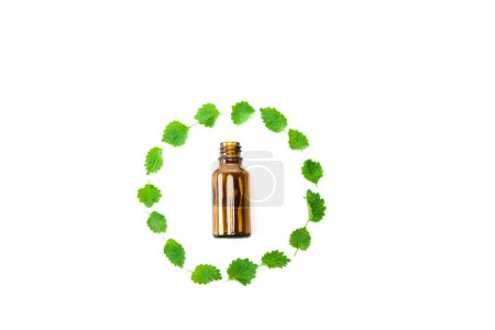 top view of bottle near frame of green fresh leaves isolated on white