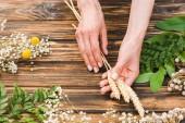 "Постер, картина, фотообои ""cropped view of woman holding wheat near plants on wooden table """