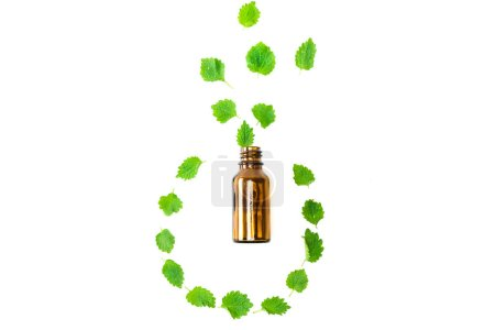 top view of bottle near green fresh leaves isolated on white