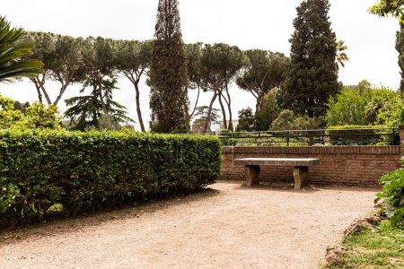 Photo pour Beau parc avec des buissons verts et des arbres dans la journée ensoleillée à Rome, Italie - image libre de droit