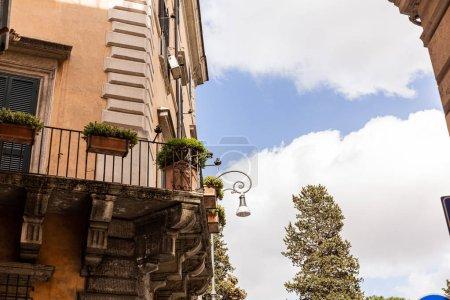 Photo pour Bâtiments avec des plantes dans des pots de fleurs à Rome, Italie - image libre de droit