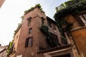"""Постер, картина, фотообои """"вид нижней части здания с зелеными растениями в Риме, Италия"""""""