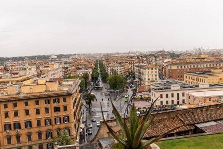 ROME, ITALIE - 28 JUIN 2019 : focus sélectif de l'aloe vera et des parapluies dans la rue