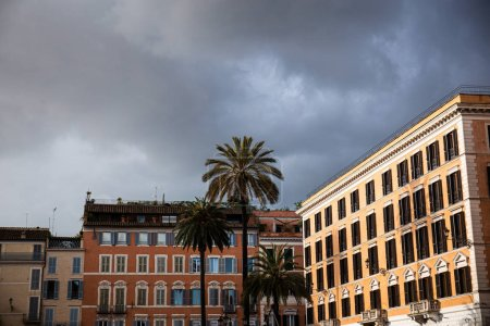 Photo for Buildings and exotic palm trees under overcast sky in rome, italy - Royalty Free Image