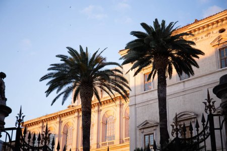 Photo for ROME, ITALY - JUNE 28, 2019: buildings and exotic palm trees - Royalty Free Image