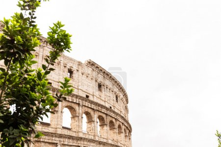 Photo for ROME, ITALY - JUNE 28, 2019: panoramic shot of old ruins of colosseum - Royalty Free Image