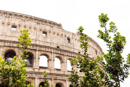 Photo for ROME, ITALY - JUNE 28, 2019: ruins of colosseum and green trees under grey sky - Royalty Free Image