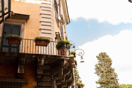 Foto de Edificio con plantas verdes en macetas en Roma, italy - Imagen libre de derechos